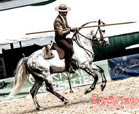 Sample Equestrian Images